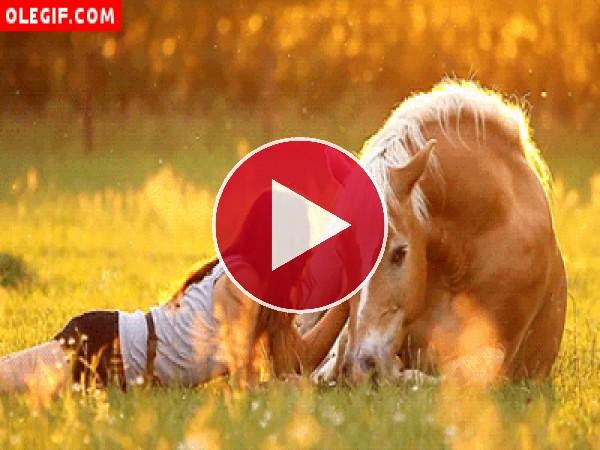 GIF: Mujer acariciando a un caballo