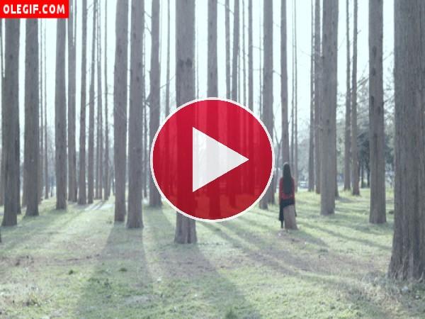 GIF: Niña en un bosque