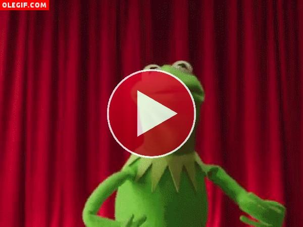 GIF: La rana Gustavo enloquecida