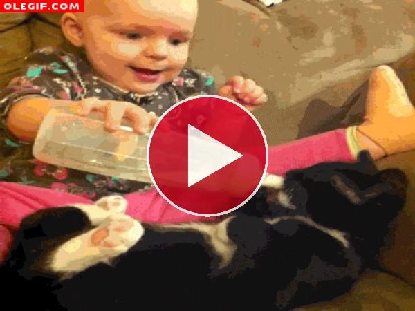 Bebé alimentando a su gato