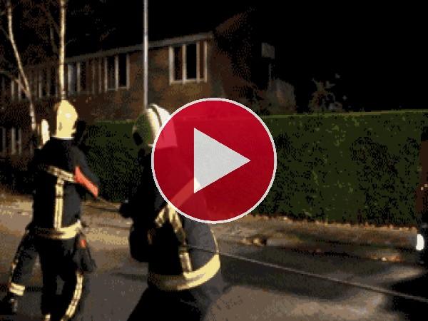 Grande este perro ayudando a los bomberos