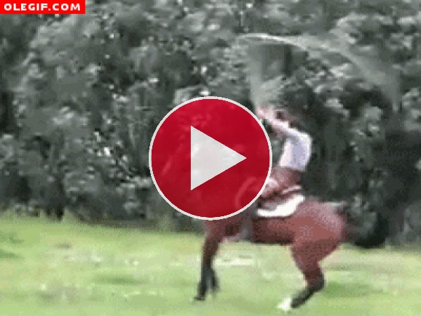 GIF: Mira a este hombre saltando a la comba con su caballo