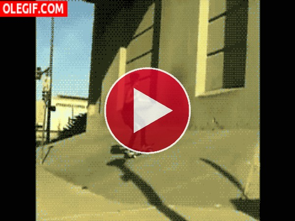 GIF: Skater dando una voltereta