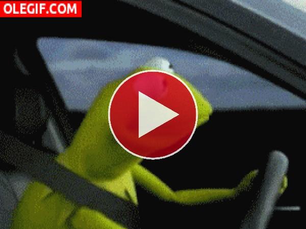GIF: La cara que se te queda cuando ves a la Rana Gustavo conduciendo