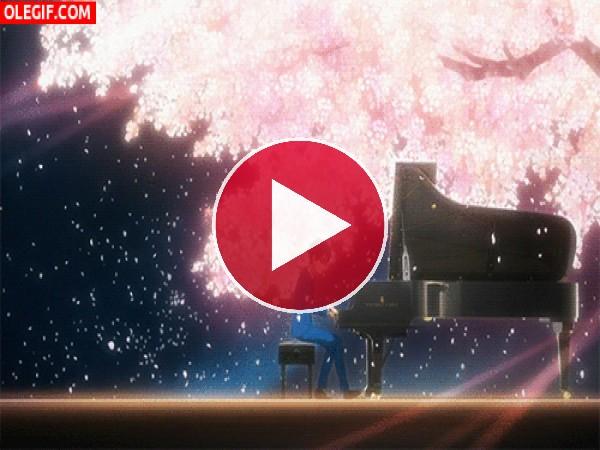 GIF: Kousei Arima tocando el piano bajo un cerezo en flor (Shigatsu wa Kimi no Uso)