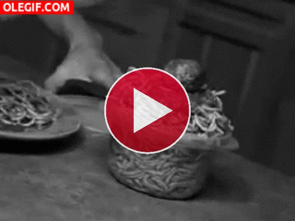 GIF: Muy bien así se cierra un tupper lleno de espaguetis con albóndigas