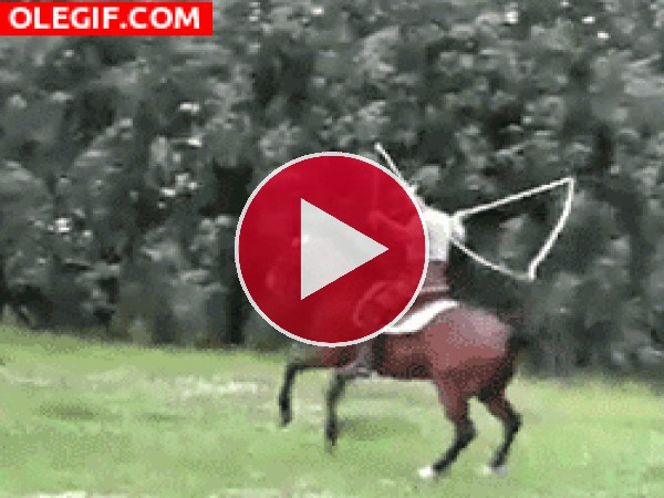 ¿Un caballo saltando a la comba?