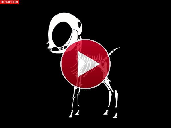GIF: Un poni moviendo el esqueleto