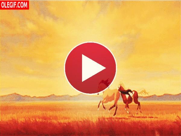 GIF: Caballos galopando por la pradera