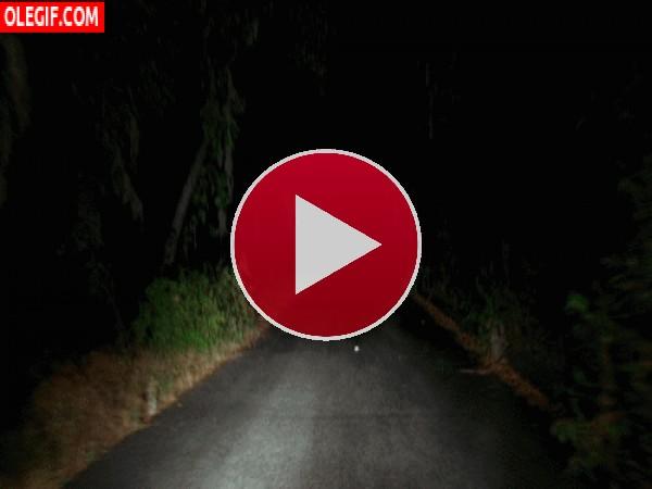 GIF: Circulando por una carretera oscura