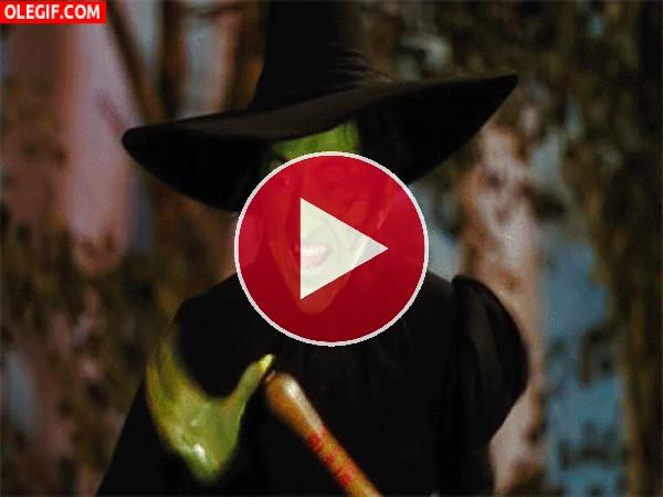 GIF: ¡Soy la bruja piruja!
