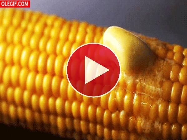 Mantequilla fundiéndose sobre la mazorca de maíz