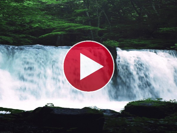 Hermosa cascada fluyendo en plena naturaleza
