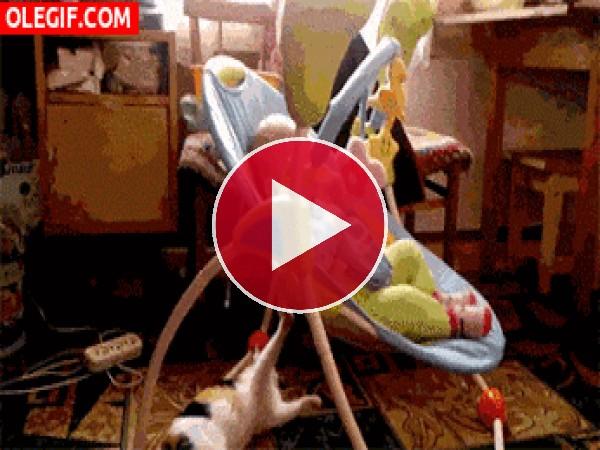 GIF: Mira a este gato meciendo al bebé