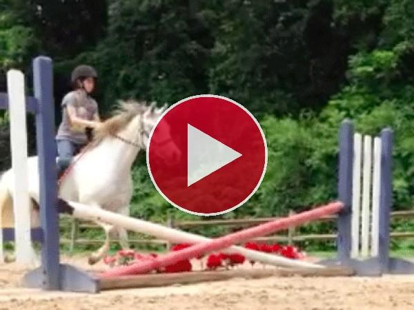 Caballo saltando un pequeño obstáculo
