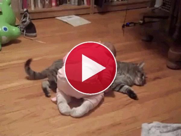GIF: A este bebé le gusta dormir sobre el gato