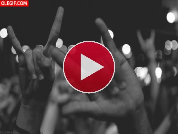 Euforia en un concierto de rock