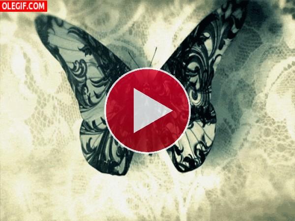 Mariposa cambiando de color