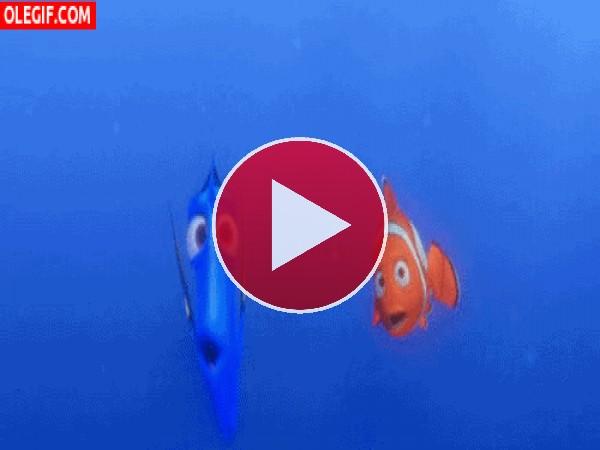 GIF: Dori desvariando junto a Nemo