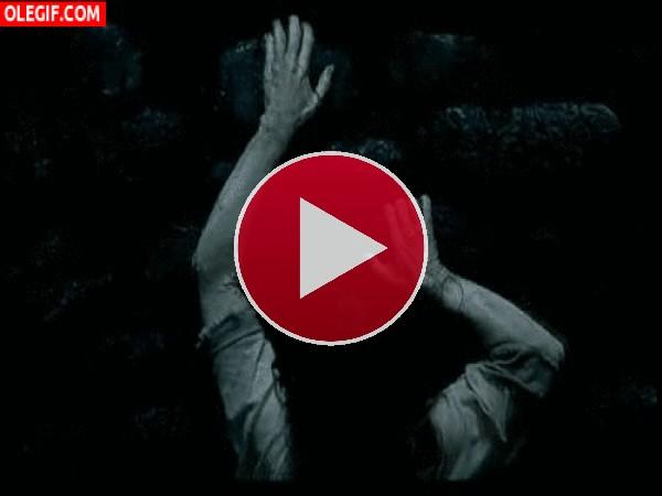 GIF: Estoy que me subo por las paredes