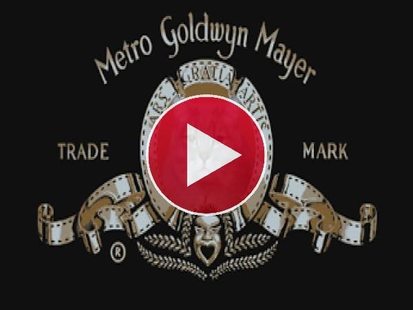GIF: El gato de la Metro Goldwyn Mayer