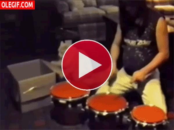 Un gato tocando la batería