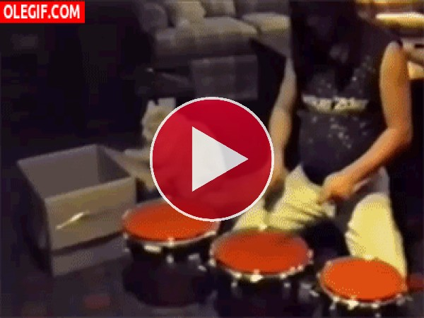 GIF: Un gato tocando la batería
