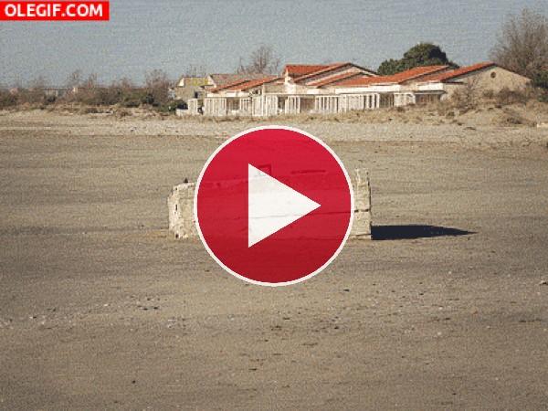 GIF: Sube y baja la marea