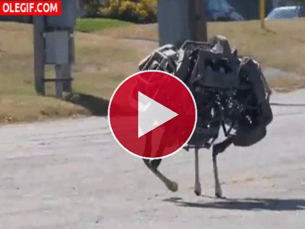 GIF: Robot corriendo veloz
