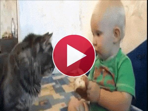 A este niño le gusta compartir su merienda con el gato