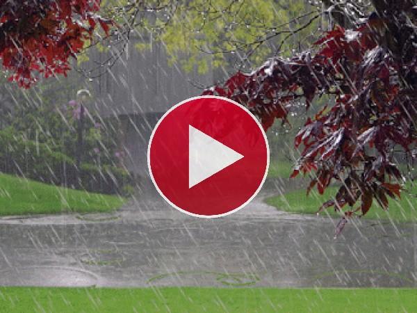 Llueve en el parque