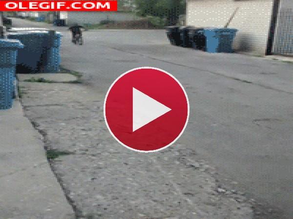 GIF: ¡Toma colleja!