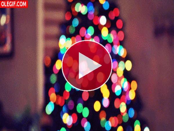 GIF: Bonitas escenas de Navidad