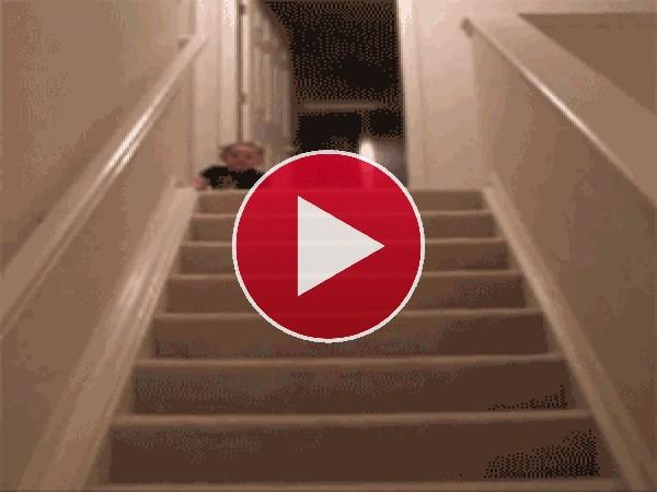 Pero que bien baja las escaleras este bebé