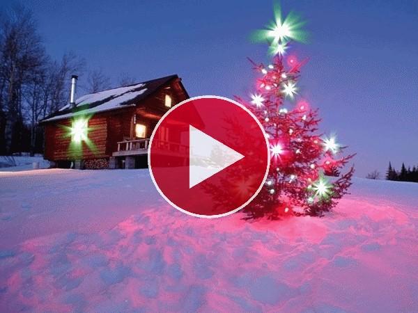 GIF: Árbol de Navidad brillando sobre la nieve