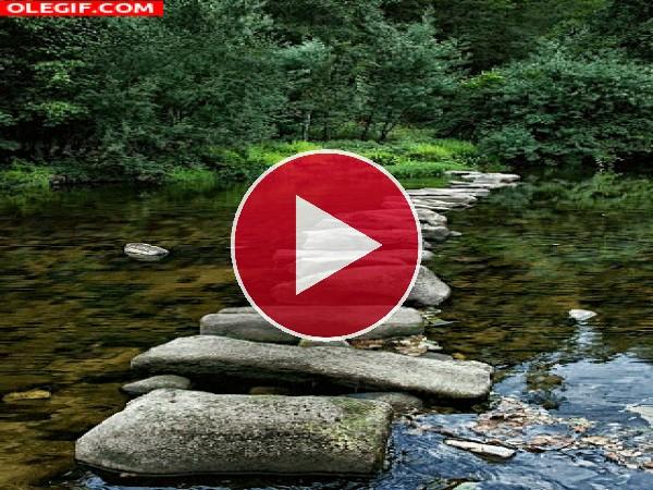 Camino de piedras sobre un río