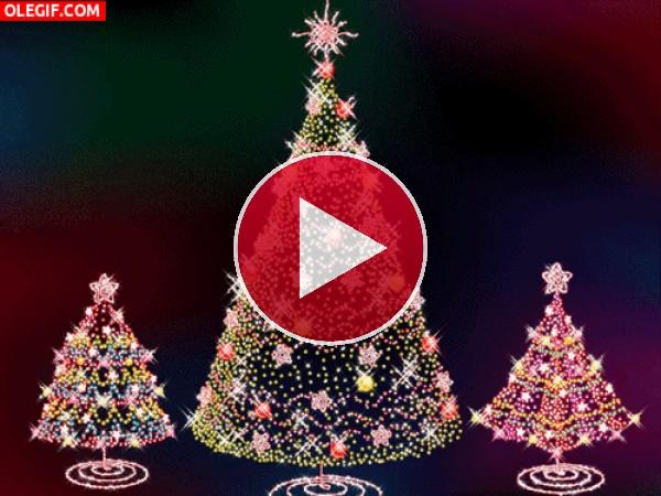 Árboles de Navidad iluminados