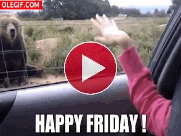 GIF: ¡Feliz viernes!