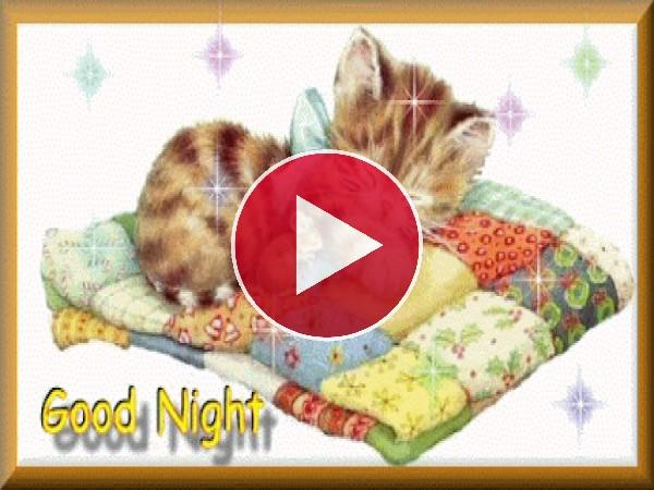 GIF: Buenas noches