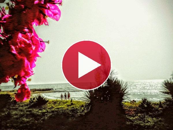 GIF: Bonitos paisajes