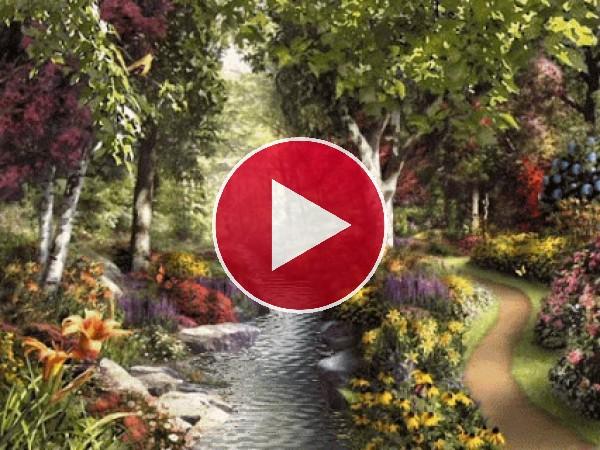 GIF: Río junto a un camino floral