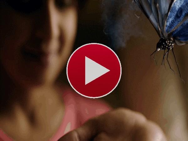 GIF: Gran mariposa posándose en la palma de la mano