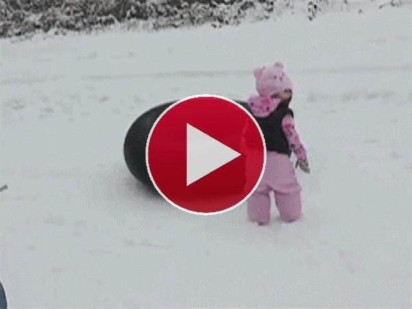 Mira a este perro disfrutando de la nieve