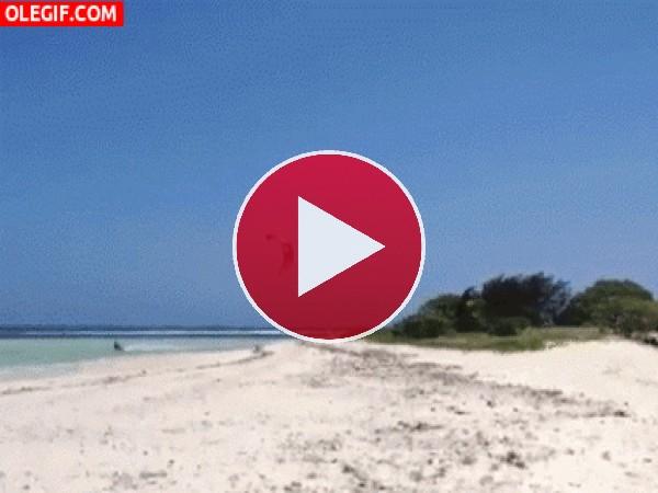 GIF: Me gusta volar de una playa a otra