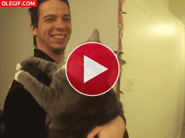 GIF: Qué tendrá la cámara que tanto lame este gato