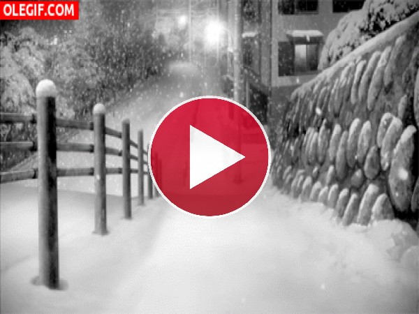 GIF: Nieva en una noche de invierno