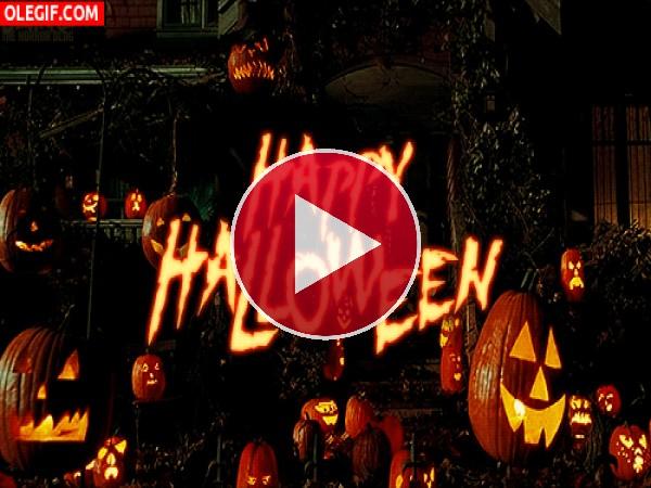 GIF: Calabazas iluminadas en la noche de Halloween