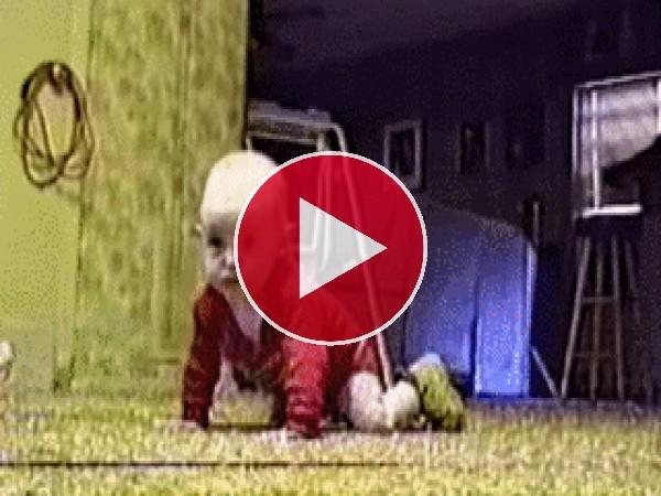 GIF: Este perro cree que el bebé es un cojín