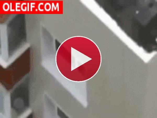 GIF: Bebé jugando en la ventana