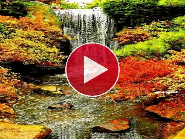 Una cascada fluyendo en otoño